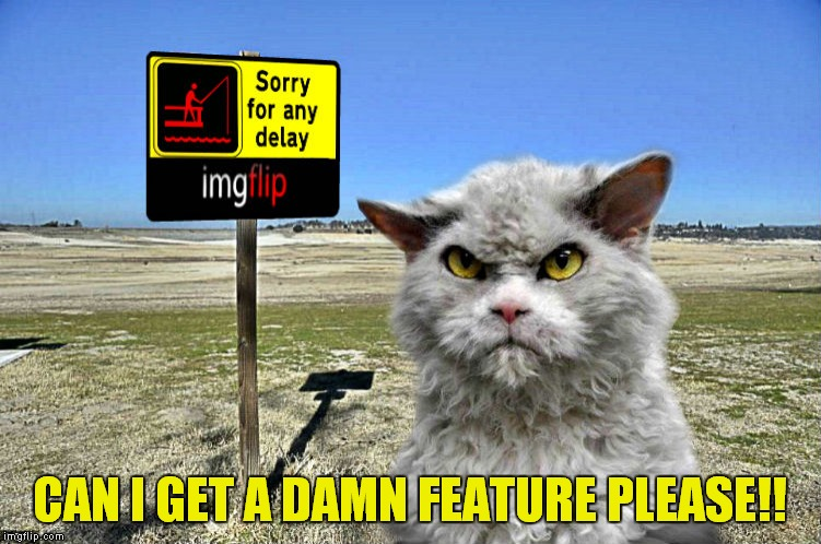 imgflip sorry with pompous cat | CAN I GET A DAMN FEATURE PLEASE!! | image tagged in imgflip sorry with pompous cat | made w/ Imgflip meme maker