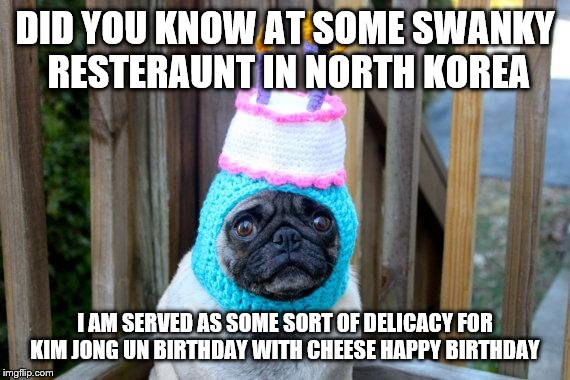 birthday pug | DID YOU KNOW AT SOME SWANKY RESTERAUNT IN NORTH KOREA I AM SERVED AS SOME SORT OF DELICACY FOR KIM JONG UN BIRTHDAY WITH CHEESE HAPPY BIRTHD | image tagged in birthday pug | made w/ Imgflip meme maker