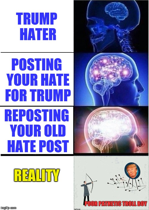 Expanding Brain Meme | TRUMP HATER POSTING YOUR HATE FOR TRUMP REPOSTING YOUR OLD HATE POST REALITY | image tagged in memes,expanding brain | made w/ Imgflip meme maker