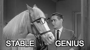 STABLE          GENIUS | image tagged in mr ed | made w/ Imgflip meme maker