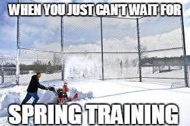 WHEN YOU JUST CAN'T WAIT FOR SPRING TRAINING | image tagged in snow on softball | made w/ Imgflip meme maker