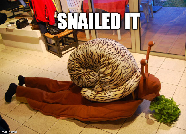 Well done! | SNAILED IT | image tagged in nailed it,snail,funny picture | made w/ Imgflip meme maker