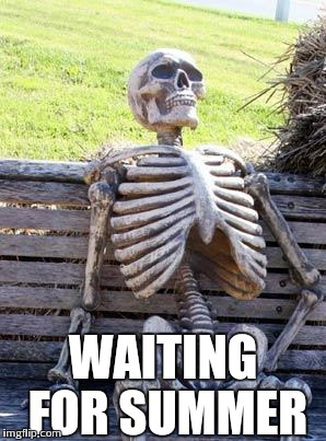 Waiting Skeleton Meme | WAITING FOR SUMMER | image tagged in memes,waiting skeleton | made w/ Imgflip meme maker