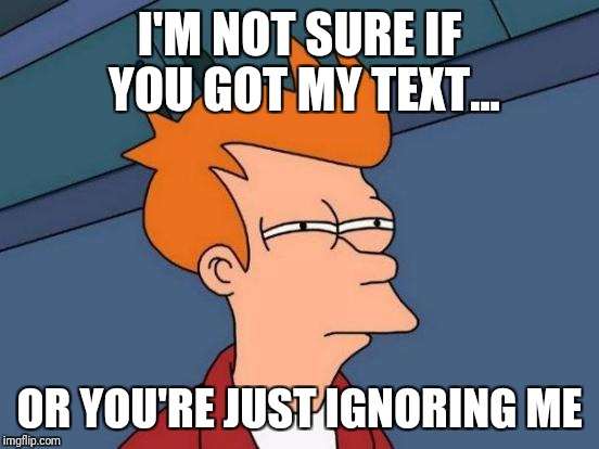 Futurama Fry Meme | I'M NOT SURE IF YOU GOT MY TEXT... OR YOU'RE JUST IGNORING ME | image tagged in memes,futurama fry | made w/ Imgflip meme maker
