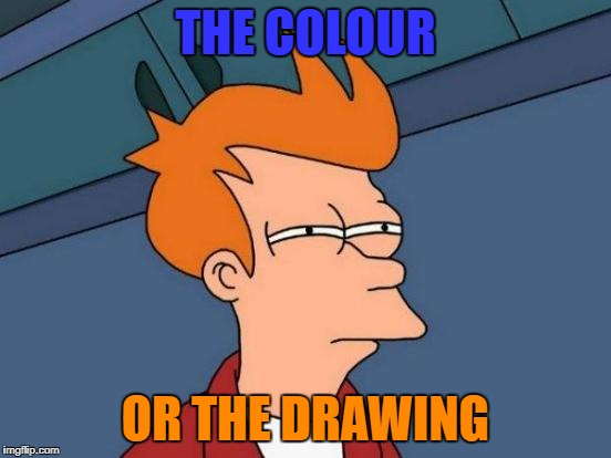 Futurama Fry Meme | THE COLOUR OR THE DRAWING | image tagged in memes,futurama fry | made w/ Imgflip meme maker