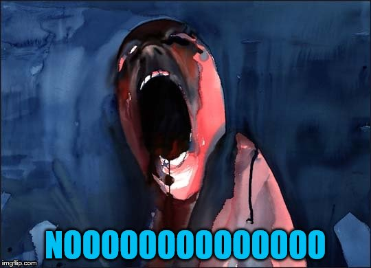 Pink Floyd Scream | NOOOOOOOOOOOOOO | image tagged in pink floyd scream | made w/ Imgflip meme maker