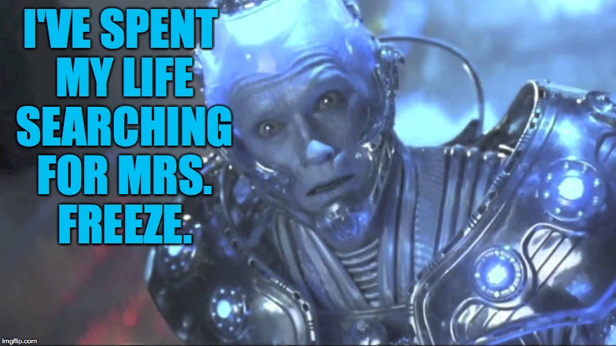 I'VE SPENT MY LIFE SEARCHING FOR MRS. FREEZE. | made w/ Imgflip meme maker
