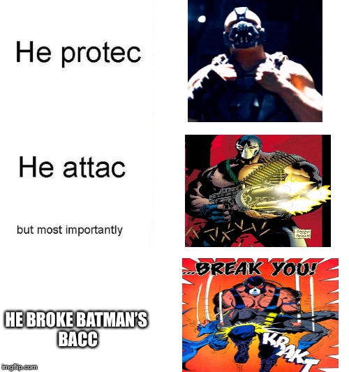 he protec | HE BROKE BATMAN'S BACC | image tagged in he protec | made w/ Imgflip meme maker