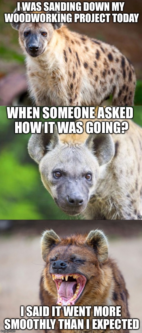 Bad Pun Hyena | I WAS SANDING DOWN MY WOODWORKING PROJECT TODAY I SAID IT WENT MORE SMOOTHLY THAN I EXPECTED WHEN SOMEONE ASKED HOW IT WAS GOING? | image tagged in bad pun hyena | made w/ Imgflip meme maker