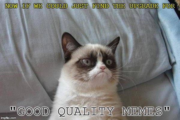 "NOW IF WE COULD JUST FIND THE UPGRADE FOR ""GOOD QUALITY MEMES"" 