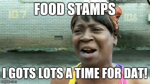 Aint Nobody Got Time For That Meme | FOOD STAMPS I GOTS LOTS A TIME FOR DAT! | image tagged in memes,aint nobody got time for that,futurama fry,funny memes,black girl wat | made w/ Imgflip meme maker