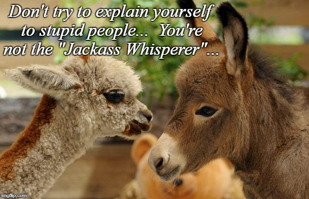 "Don't try... | Don't try to explain yourself to stupid people...  You're not the ""Jackass Whisperer""... 