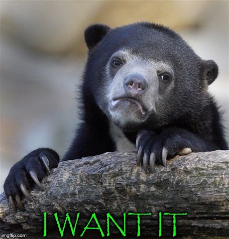 Confession Bear Meme | I WANT IT | image tagged in memes,confession bear | made w/ Imgflip meme maker
