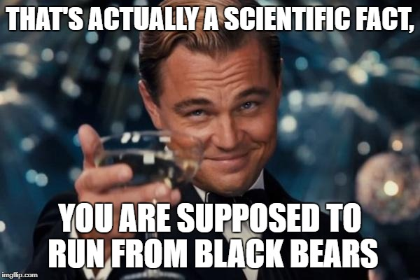 Leonardo Dicaprio Cheers Meme | THAT'S ACTUALLY A SCIENTIFIC FACT, YOU ARE SUPPOSED TO RUN FROM BLACK BEARS | image tagged in memes,leonardo dicaprio cheers | made w/ Imgflip meme maker