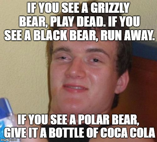10 Guy |  IF YOU SEE A GRIZZLY BEAR, PLAY DEAD. IF YOU SEE A BLACK BEAR, RUN AWAY. IF YOU SEE A POLAR BEAR, GIVE IT A BOTTLE OF COCA COLA | image tagged in memes,10 guy | made w/ Imgflip meme maker