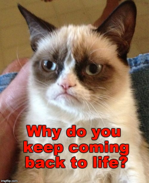 Grumpy Cat Meme | Why do you keep coming back to life? | image tagged in memes,grumpy cat | made w/ Imgflip meme maker