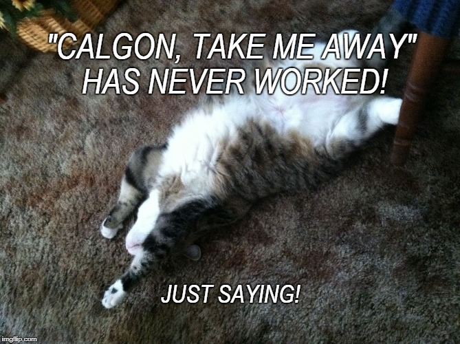 """CALGON, TAKE ME AWAY"" HAS NEVER WORKED! JUST SAYING! 