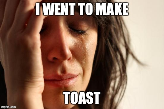 First World Problems Meme | I WENT TO MAKE TOAST | image tagged in memes,first world problems | made w/ Imgflip meme maker