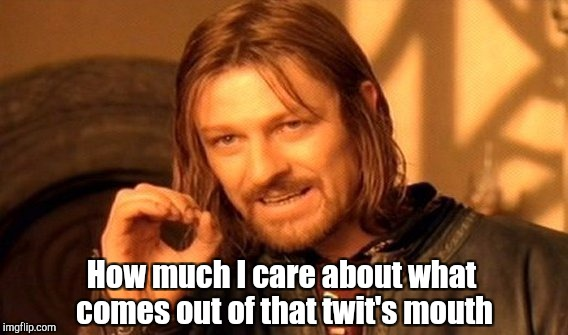 One Does Not Simply Meme | How much I care about what comes out of that twit's mouth | image tagged in memes,one does not simply | made w/ Imgflip meme maker