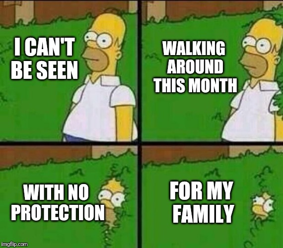 Homer Simpson in Bush - Large | I CAN'T BE SEEN FOR MY FAMILY WALKING AROUND THIS MONTH WITH NO PROTECTION | image tagged in homer simpson in bush - large | made w/ Imgflip meme maker