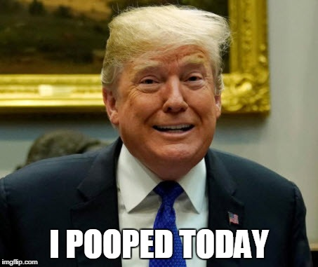 Trump  | I POOPED TODAY | image tagged in donald trump,political meme,deplorable donald | made w/ Imgflip meme maker
