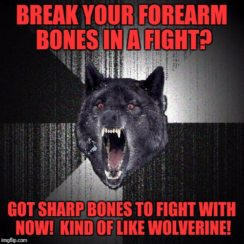 Insanity Wolf Meme | BREAK YOUR FOREARM BONES IN A FIGHT? GOT SHARP BONES TO FIGHT WITH NOW!  KIND OF LIKE WOLVERINE! | image tagged in memes,insanity wolf | made w/ Imgflip meme maker