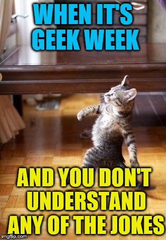 Cool Cat Stroll | WHEN IT'S GEEK WEEK AND YOU DON'T UNDERSTAND ANY OF THE JOKES | image tagged in memes,cool cat stroll | made w/ Imgflip meme maker