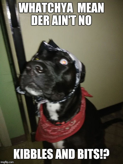 WHATCHYA  MEAN DER AIN'T NO KIBBLES AND BITS!? | image tagged in thug life | made w/ Imgflip meme maker