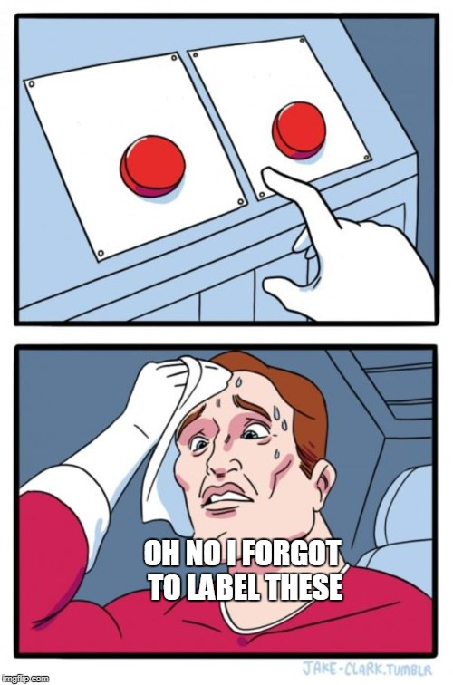 Two Buttons Meme | OH NO I FORGOT TO LABEL THESE | image tagged in memes,two buttons | made w/ Imgflip meme maker