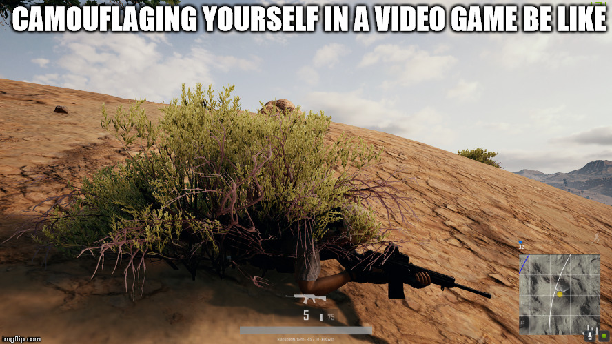 Just Like In Real Life! | CAMOUFLAGING YOURSELF IN A VIDEO GAME BE LIKE | image tagged in gaming,pubg,online,camouflage,survival,real life | made w/ Imgflip meme maker