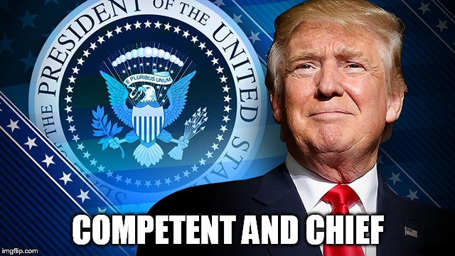 COMPETENT AND CHIEF | image tagged in competent and chief | made w/ Imgflip meme maker