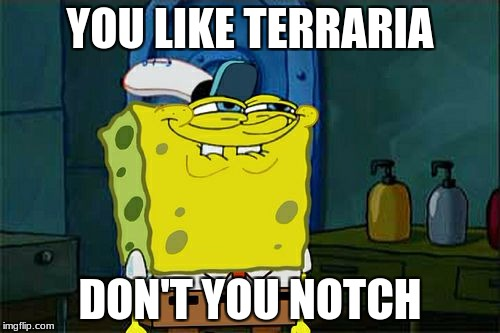 Dont You Squidward Meme | YOU LIKE TERRARIA DON'T YOU NOTCH | image tagged in memes,dont you squidward | made w/ Imgflip meme maker