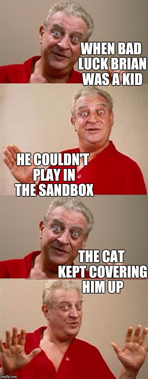 Bad luck brian don't get no respect. No respect at all | WHEN BAD LUCK BRIAN WAS A KID THE CAT KEPT COVERING HIM UP HE COULDN'T PLAY IN THE SANDBOX | image tagged in bad pun rodney dangerfield,bad luck brian,memes | made w/ Imgflip meme maker