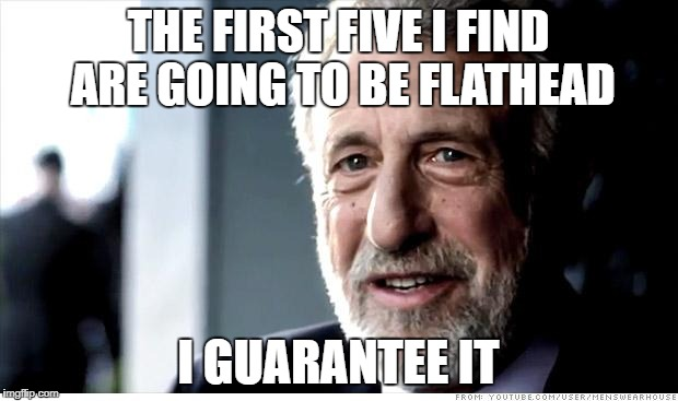 I Guarantee It | THE FIRST FIVE I FIND ARE GOING TO BE FLATHEAD I GUARANTEE IT | image tagged in memes,i guarantee it,AdviceAnimals | made w/ Imgflip meme maker