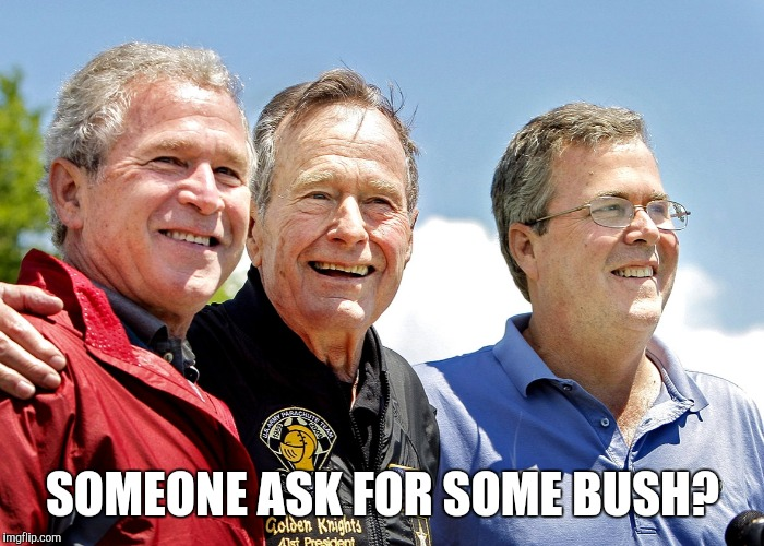 SOMEONE ASK FOR SOME BUSH? | made w/ Imgflip meme maker