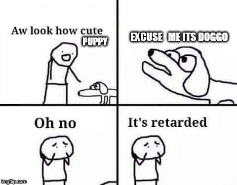 retarded dog | PUPPY EXCUSE   ME ITS DOGGO | image tagged in retarded dog | made w/ Imgflip meme maker