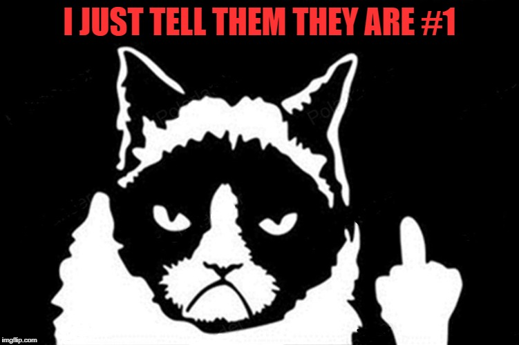 Grumpy Cat Flipping The Bird | I JUST TELL THEM THEY ARE #1 | image tagged in grumpy cat flipping the bird | made w/ Imgflip meme maker