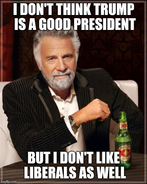 The Most Interesting Man In The World Meme | I DON'T THINK TRUMP IS A GOOD PRESIDENT BUT I DON'T LIKE LIBERALS AS WELL | image tagged in memes,the most interesting man in the world | made w/ Imgflip meme maker