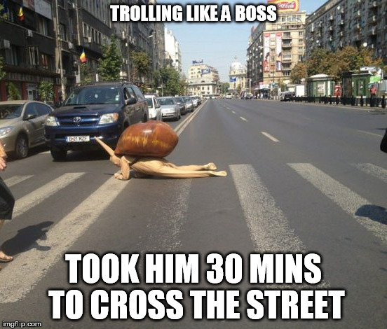 TROLLING LIKE A BOSS TOOK HIM 30 MINS TO CROSS THE STREET | made w/ Imgflip meme maker