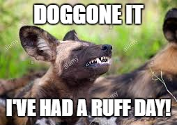 DOGGONE IT I'VE HAD A RUFF DAY! | made w/ Imgflip meme maker