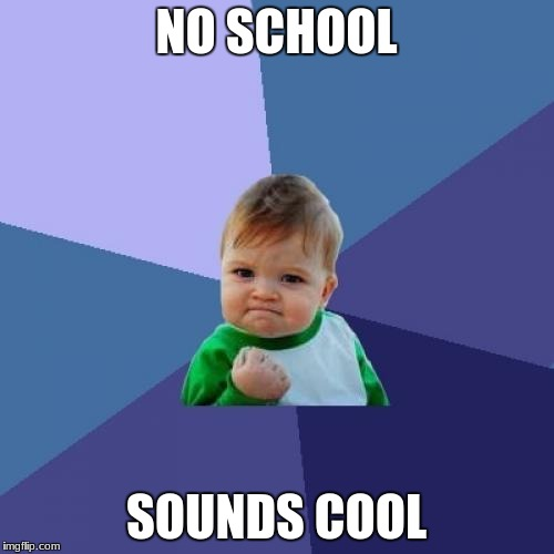 Success Kid Meme | NO SCHOOL SOUNDS COOL | image tagged in memes,success kid | made w/ Imgflip meme maker