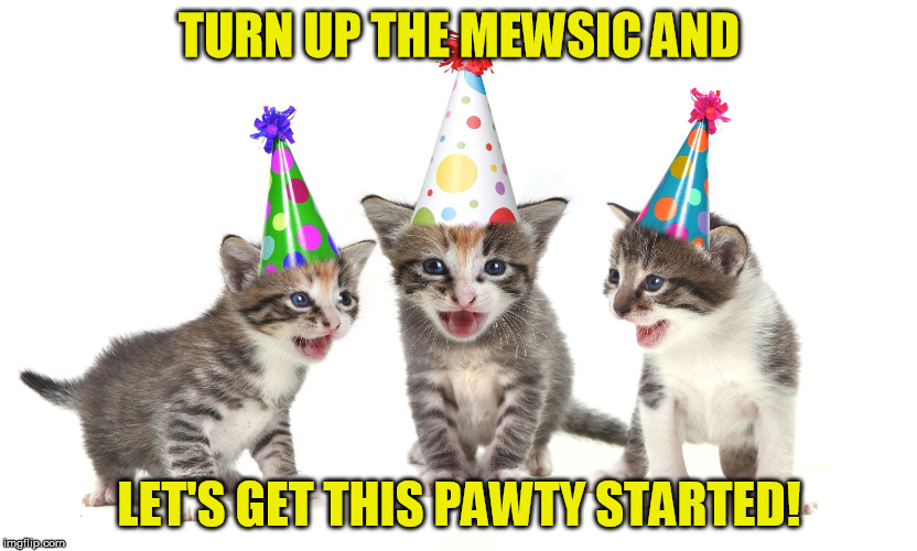 TURN UP THE MEWSIC AND LET'S GET THIS PAWTY STARTED! | made w/ Imgflip meme maker