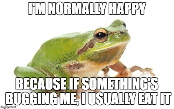 I'M NORMALLY HAPPY BECAUSE IF SOMETHING'S BUGGING ME, I USUALLY EAT IT | made w/ Imgflip meme maker