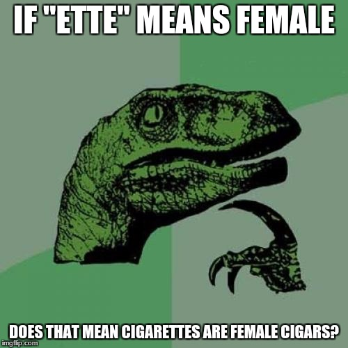 "Philosoraptor Meme | IF ""ETTE"" MEANS FEMALE DOES THAT MEAN CIGARETTES ARE FEMALE CIGARS? 
