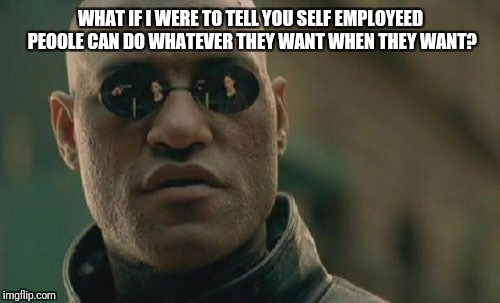 Matrix Morpheus Meme | WHAT IF I WERE TO TELL YOU SELF EMPLOYEED PEOOLE CAN DO WHATEVER THEY WANT WHEN THEY WANT? | image tagged in memes,matrix morpheus | made w/ Imgflip meme maker