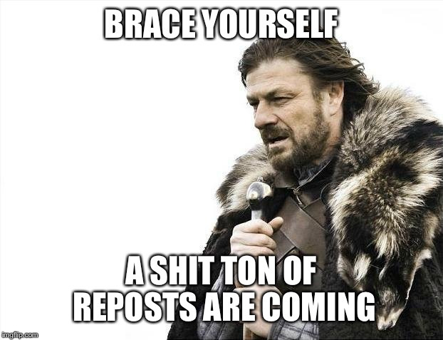 Brace Yourselves X is Coming Meme | BRACE YOURSELF A SHIT TON OF REPOSTS ARE COMING | image tagged in memes,brace yourselves x is coming | made w/ Imgflip meme maker