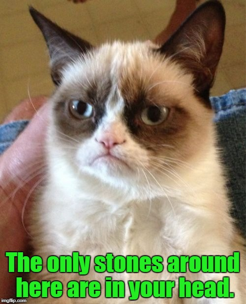 Grumpy Cat Meme | The only stones around here are in your head. | image tagged in memes,grumpy cat | made w/ Imgflip meme maker