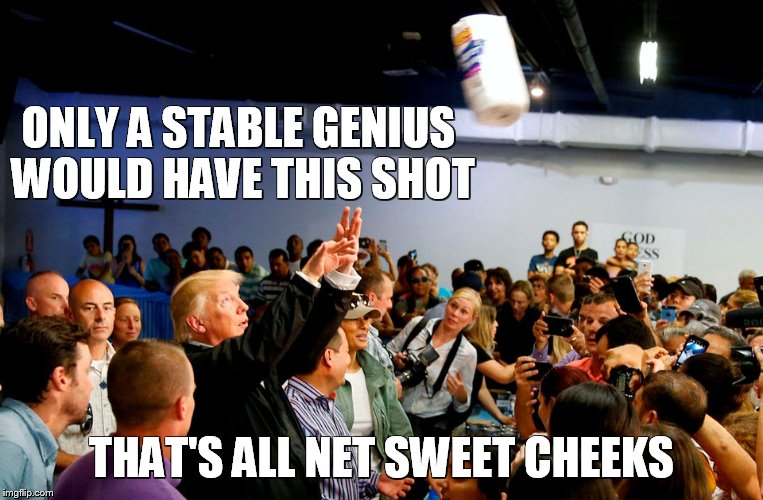 Stable genius has nothing but net | ONLY A STABLE GENIUS WOULD HAVE THIS SHOT THAT'S ALL NET SWEET CHEEKS | image tagged in trump tosses towels,memes,donald trump,paper towels,basketball,puerto rico | made w/ Imgflip meme maker