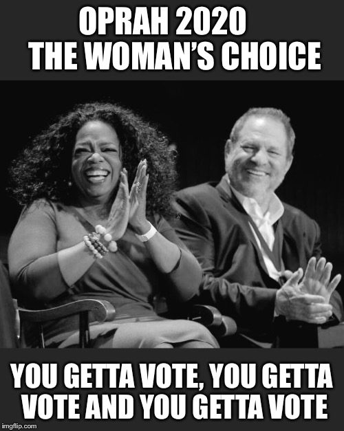 OPRAH 2020   THE WOMAN'S CHOICE YOU GETTA VOTE, YOU GETTA VOTE AND YOU GETTA VOTE | image tagged in oprah you get a | made w/ Imgflip meme maker