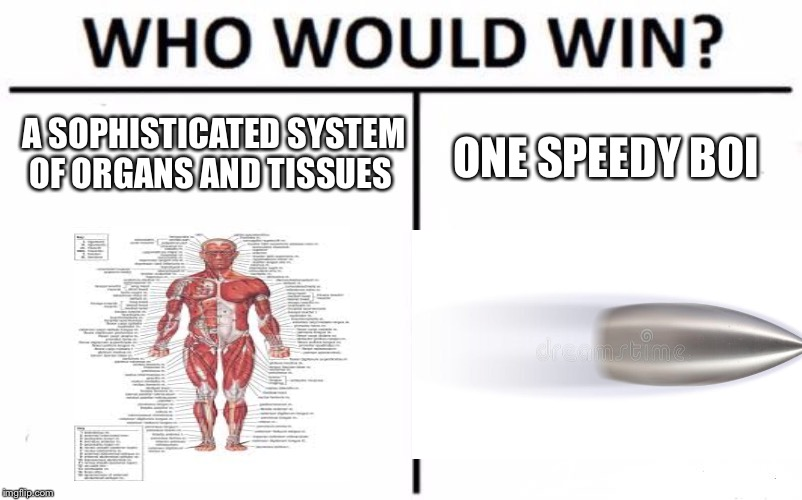 Who Would Win? Meme | A SOPHISTICATED SYSTEM OF ORGANS AND TISSUES ONE SPEEDY BOI | image tagged in memes,who would win | made w/ Imgflip meme maker